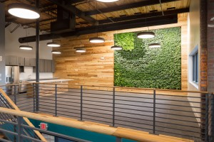 Green Wall Feature